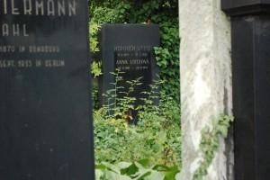 A grave in Nový židovský h?bitov.
